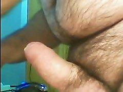 BEAR CUMSHOT