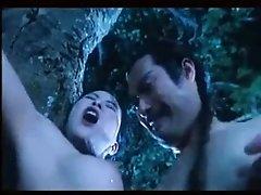 Japanese Kung Foo sex...funny