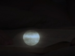 Hot intensive sex at night between Max Sargent and Lance