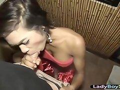 Exotic asian ladyboy in bareback ecstasy