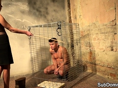 Dominant beauty humiliates her caged slave