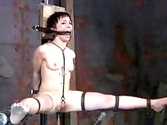 Scared short-haired bitch is scared while getting a bondage punishment