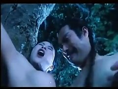 Japanese Kung Foo sex...funny