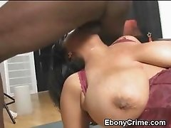 Huge Titty Black Amateur Face Humped Until Gagging